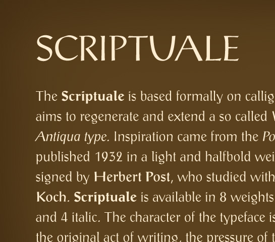 Scriptuale usage sample
